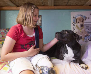 girl who lost a leg gets a dog with three legs