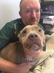 Vet snuggling with dog he rescued