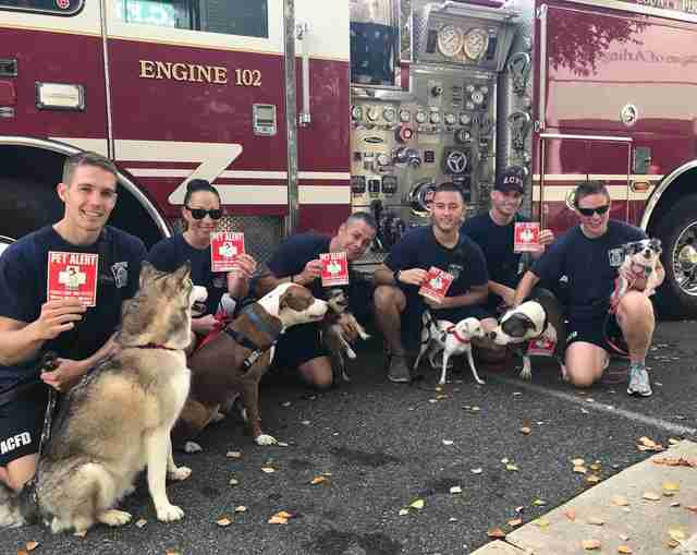 Firefighters posing with shelter dogs in front of fire truck