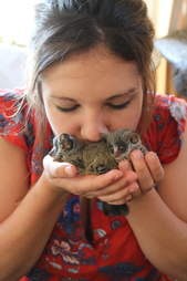Woman kissing bushbabies in her hands