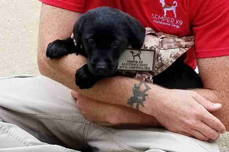 Christopher Baity and a black labrador puppy in training