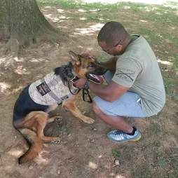 a veteran and his service dog