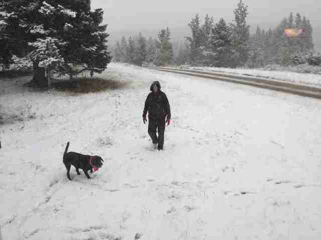 Woman and dog out in the snow