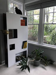 Book case made perfectly for cats