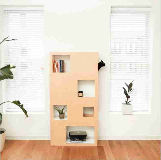 Man invents book case for his cat