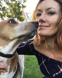 coonhound violet lab dog rescue