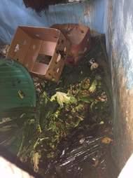 garbage zoo florida