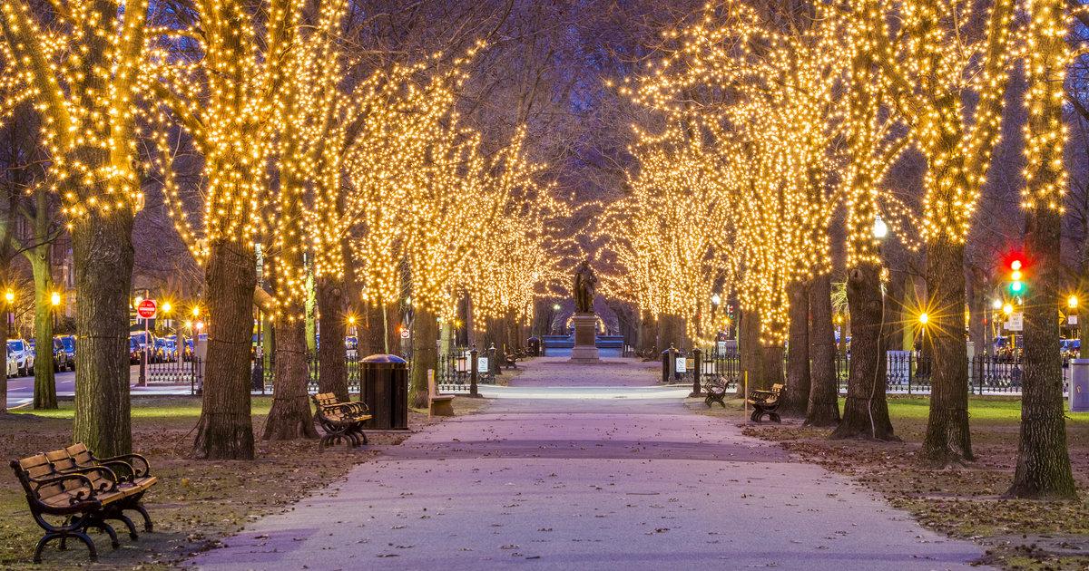 Everything You Must Do in Boston This Holiday Season