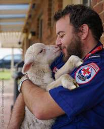 Man holding rescue lamb in his arms