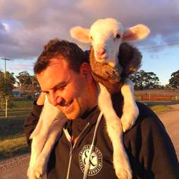 Man carrying rescued lamb on his shoulders