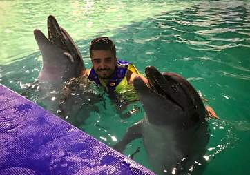 Man swimming with captive dolphins at hotel
