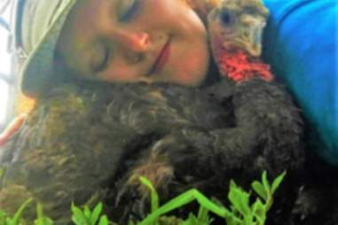 Turkey and rescuer cuddle at Woodstock Farm Sanctuary