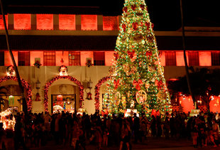Everything You Must Do Over the Holidays on Oahu