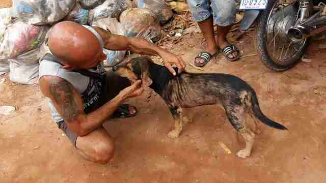 Man petting rescue dog in Cambodia