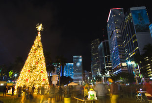 Everything You Need to Do in Miami This Holiday Season