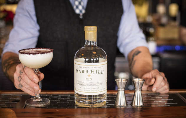 The 7 Best American Gins to Buy Now