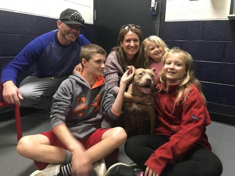 Shelter dog with large family