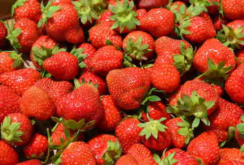 San Diego Strawberries