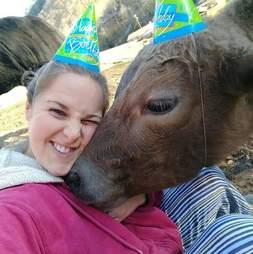 cow celebrates first birthday