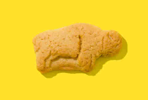 barnums animal crackers bison