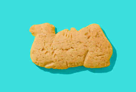 barnums animal crackers camel
