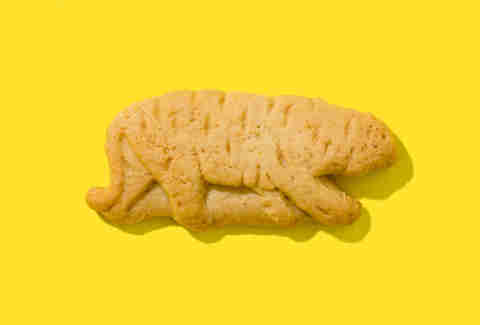 barnums animal cracker tiger