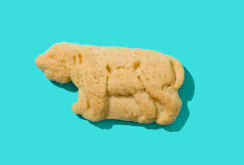 barnums animal crackers cougar