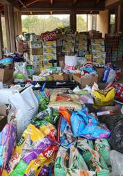 california fires animal rescue donations