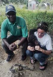 Chimp with rescuers in Liberia