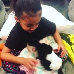 Little girl holding baby capuchin monkey