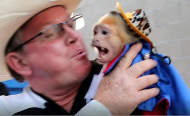 Man holding frightened monkey in costume
