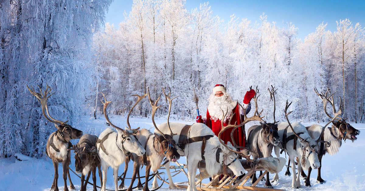 Santa S Reindeer Names Every Reindeer Ranked From Rudolph To