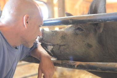 Man touching noses with a pig
