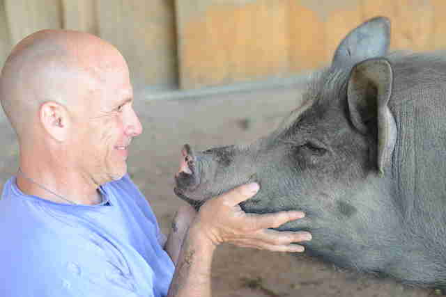 Man holding face of rescued pig