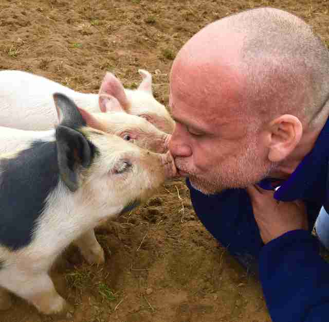 Man kissing noses of little piglets
