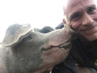 Selfie with man and pig