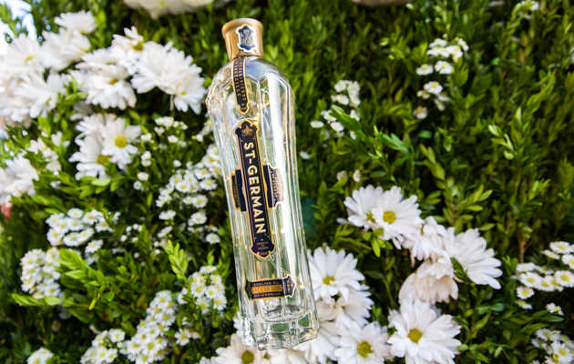 I Drank an Entire Bottle of St-Germain in 30 Days, Here's What I Learned