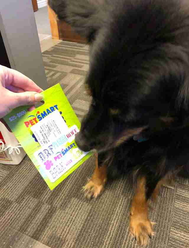 Sarge opens his gift card to PetSmart
