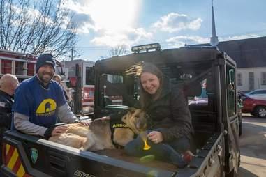 sick german shepherd puppy mill rescue victoria