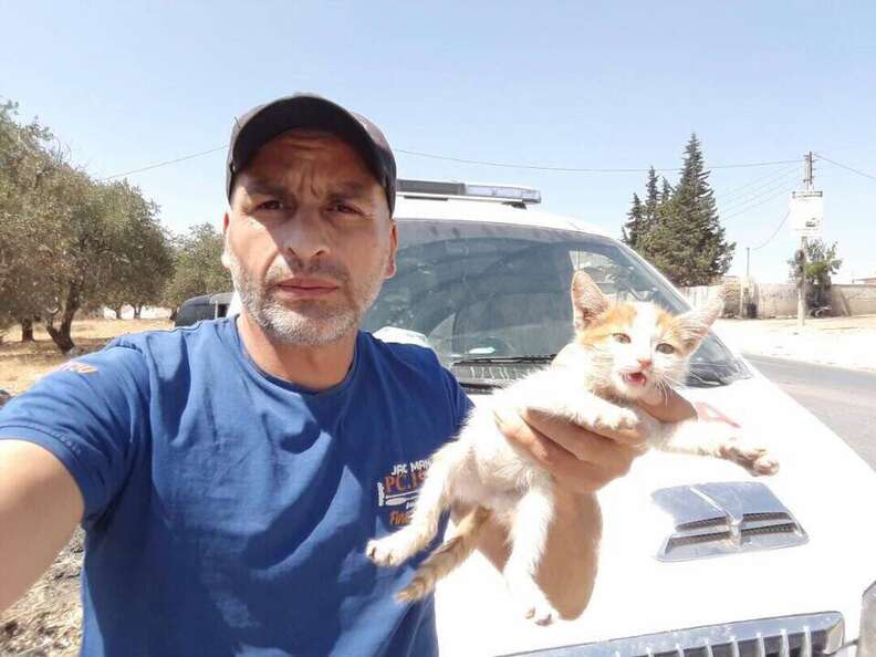 Man holding rescue kitten in his hands
