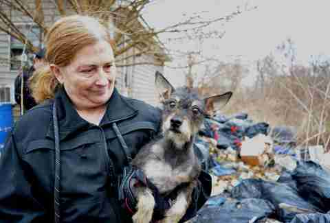 Rescuer with dog saved from hoarding case