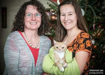 smush rescue kitten cat