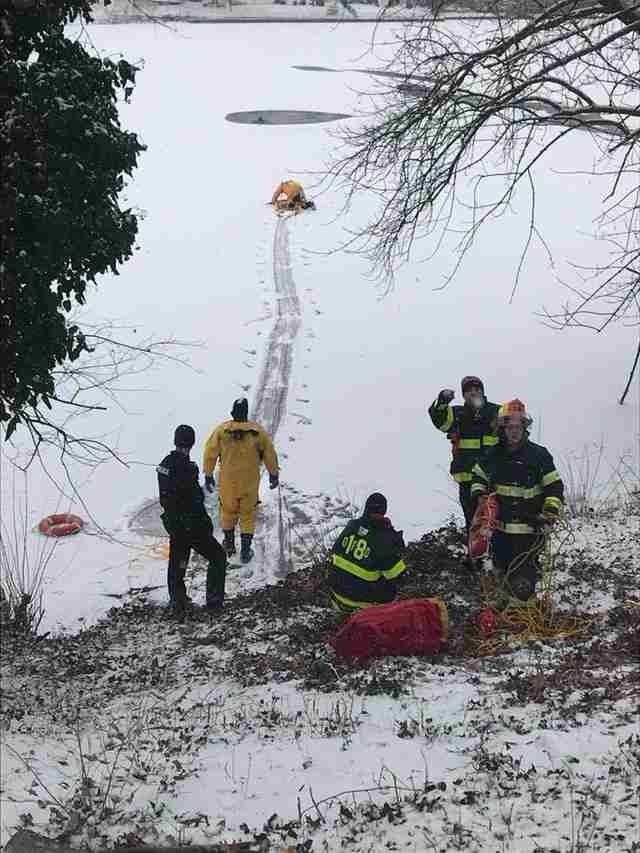 firefighters rescue Shar Pei from frozen lake