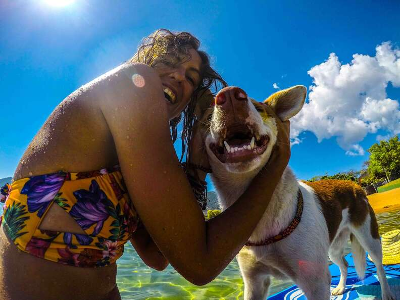Dog and woman smiling together