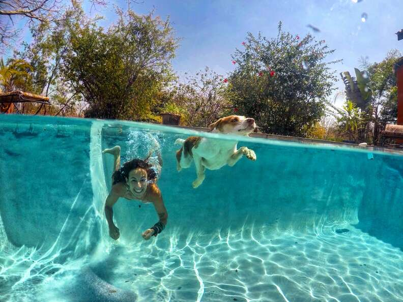 Woman and dog swimming in pool together