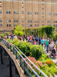 things to do on the highline