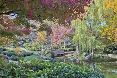 japanese garden fort worth
