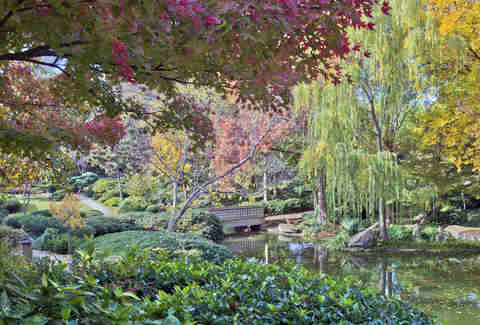 japanese garden fort worth