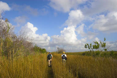florida everglades hike