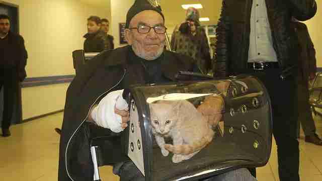 Senhor se emociona ao encontrar gato após incêndio